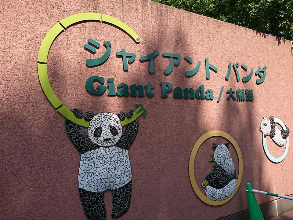 【上野動物園】有休で待ち時間少なくパンダのシャンシャンに会いに行こう!
