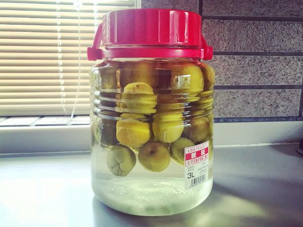 【レシピ】梅酒の仕込み時期到来!今年は梅酒作りに初挑戦しました♪