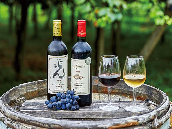 知って、旅して、飲む 今、知りたい日本ワインのコト