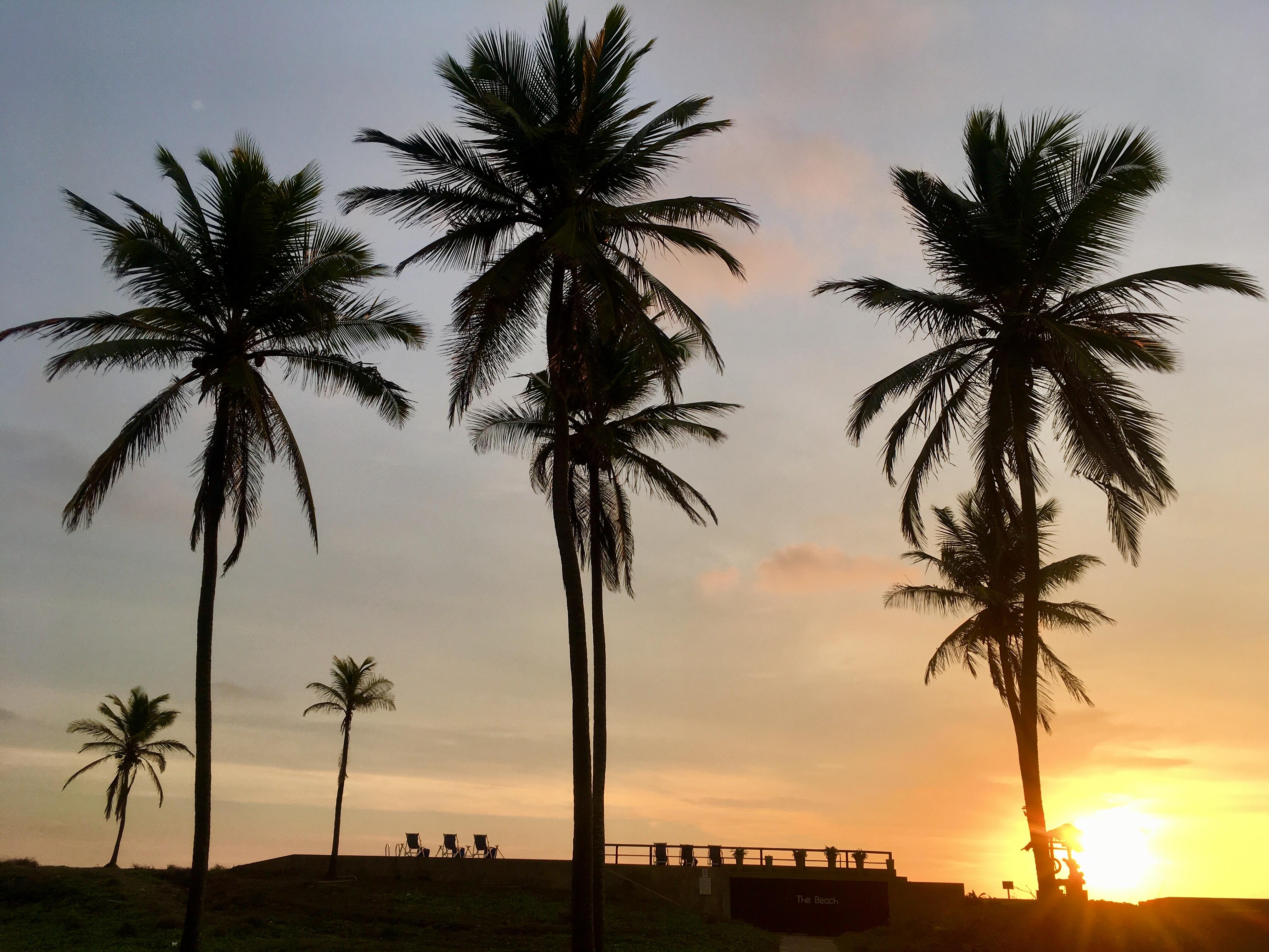 【スリランカ旅行②】ホテル篇~Jetwing Lagoon(ジェットウィングラグーン)