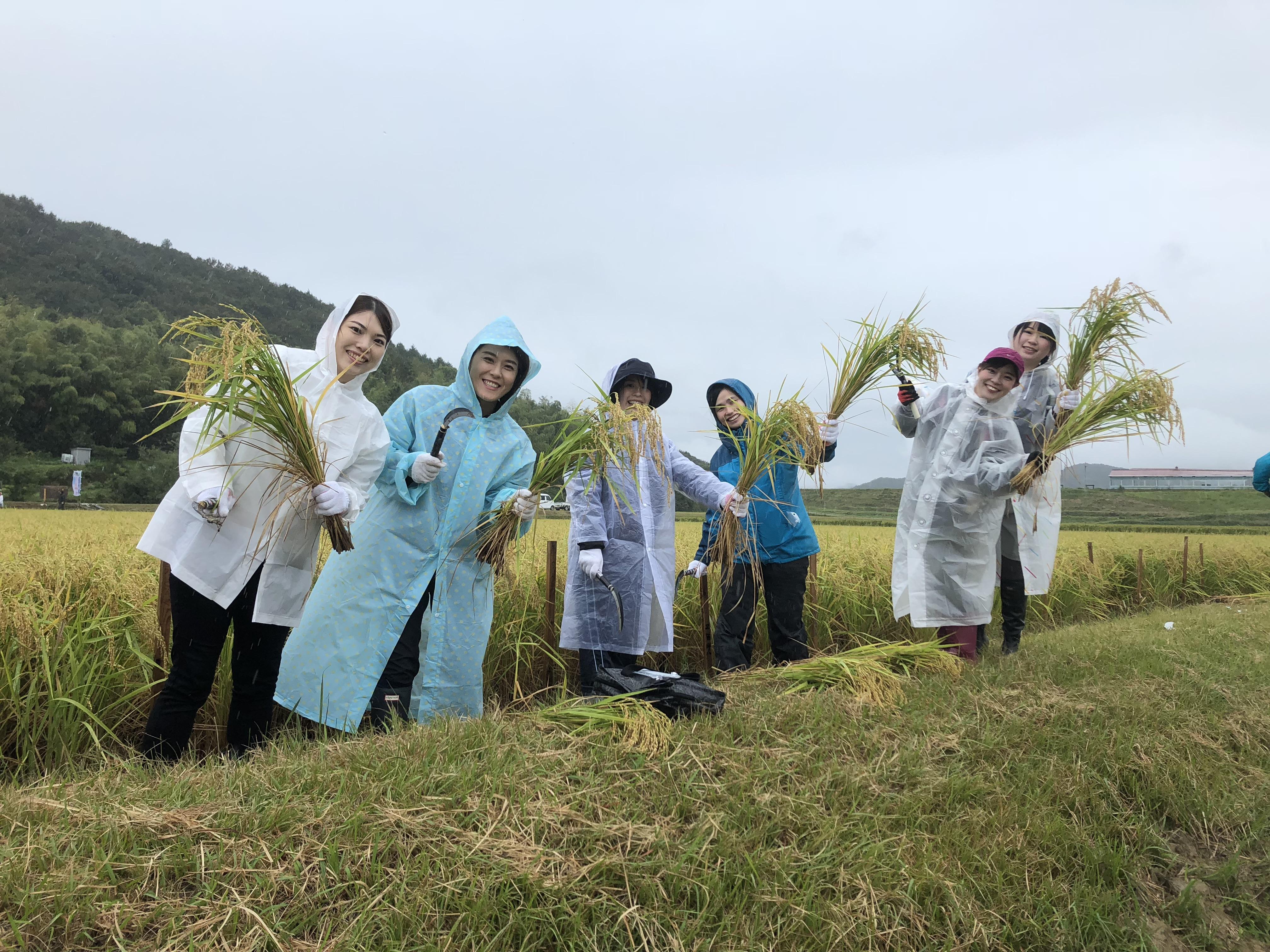 <レポート>第3回 稲刈り&地元食材の昼食を満喫!