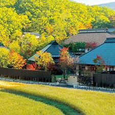 【277】紅葉シーズンの黒川温泉へ「深山山荘」で癒やしのランチ11/19(月)