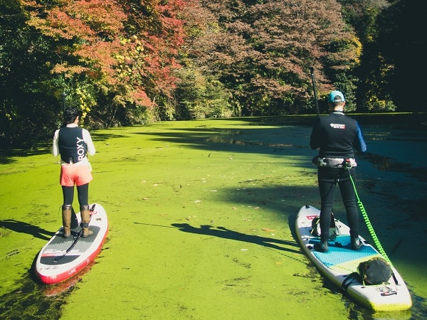 抹茶みたいな水面!紅葉の穴場!東京湾アクアラインですぐの「亀山湖(千葉県)」へ