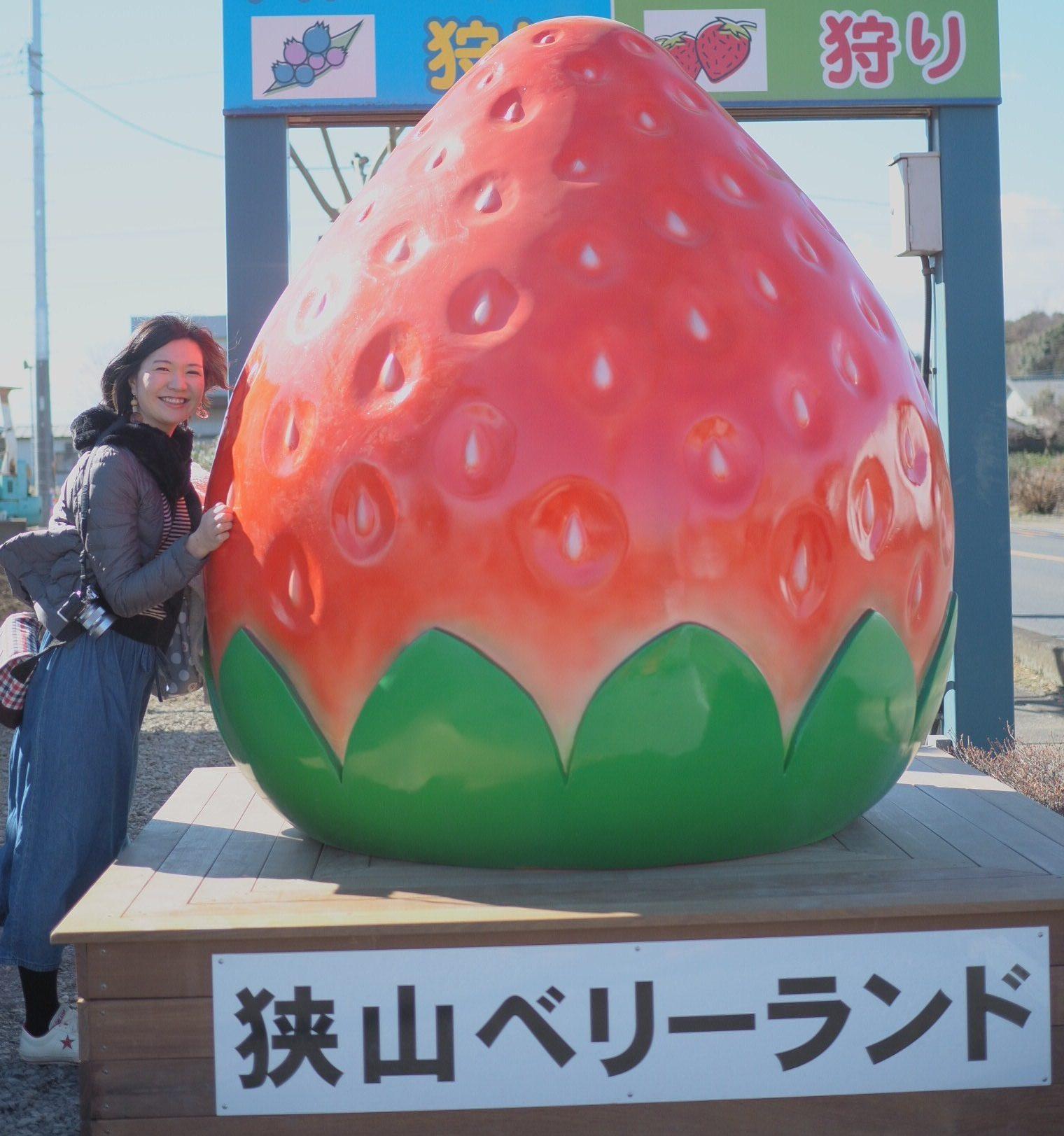関東最大級のベリー農園、「狭山ベリーランド」でイチゴ狩り☆