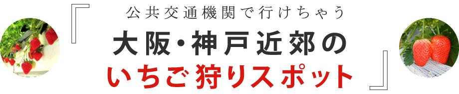公共交通機関で行けちゃう 大阪・神戸近郊の いちご狩りスポット