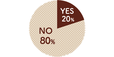 YES20% NO80%