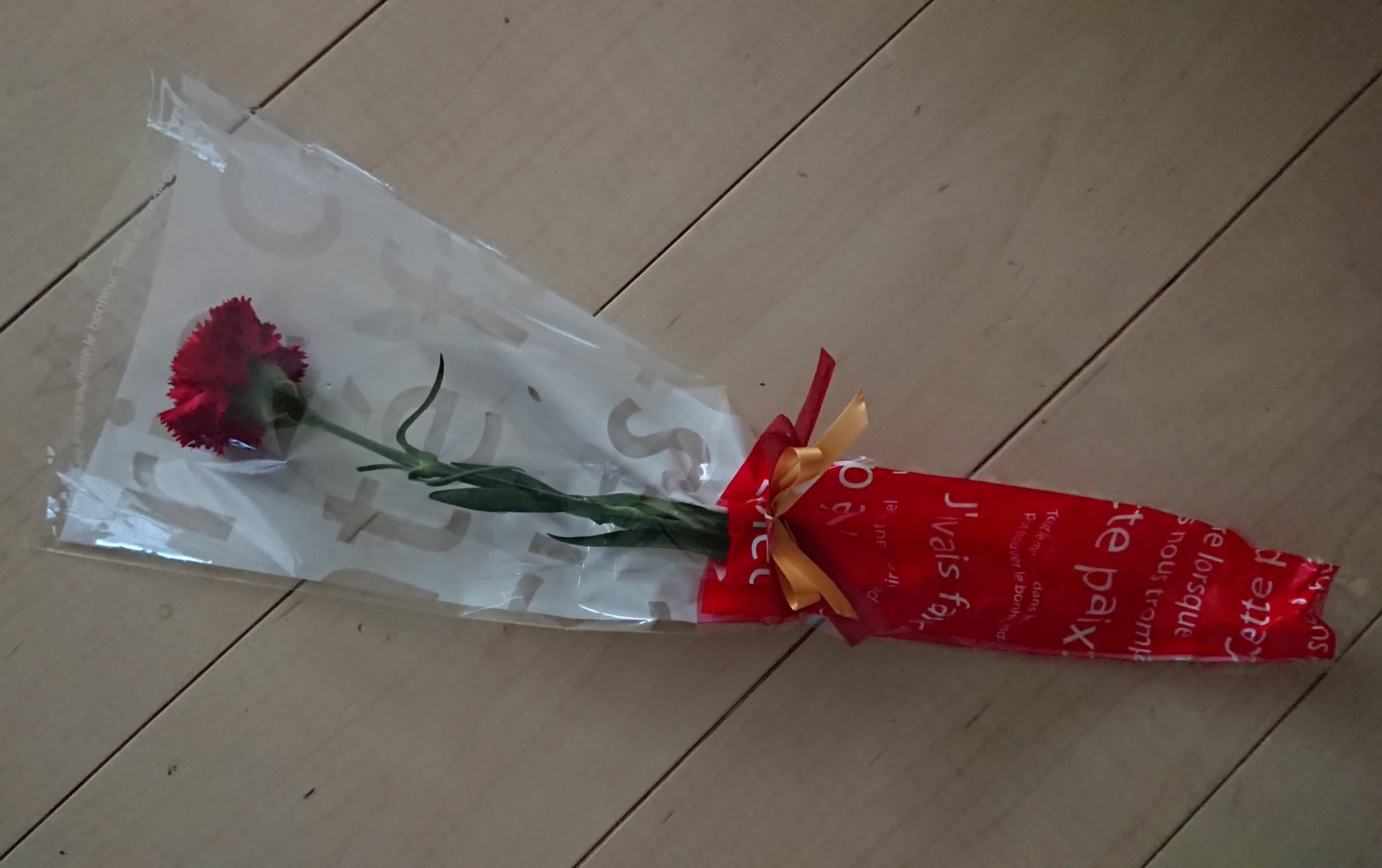 もうすぐ母の日!切り花を長持ちさせるコツ