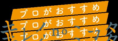キレイnoミカタ