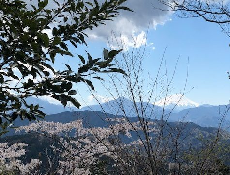 ベストシーズン到来!高尾山で絶景リフレッシュ旅