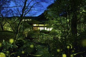 【編集部ブログ<OSAKA>】太閤園 「ホタル物語」がスタート