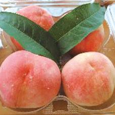 【062】ブルーベリー狩りや納涼茶屋へも 旬の桃を買いに行こう!7/22(月)※残席わずか