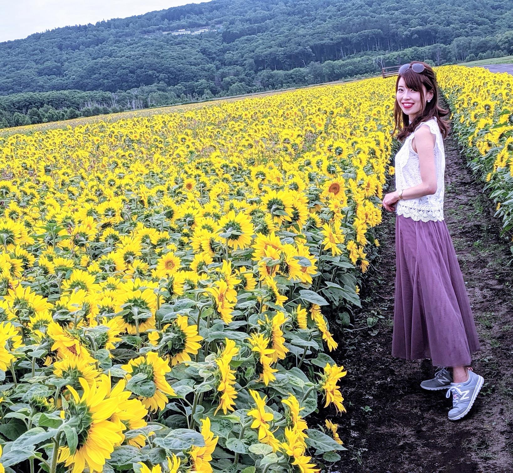 女満別空港近くひまわり畑