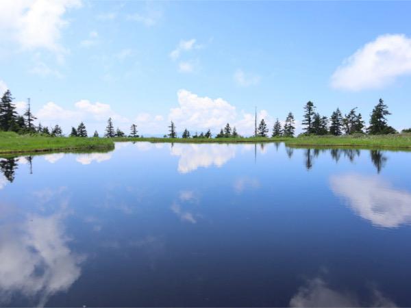 【登山】天空の楽園!池塘リフレクションとお花畑 会津駒ヶ岳