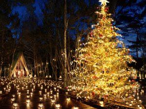 【宿泊券のプレゼント付き】「軽井沢高原教会 星降る森のクリスマス 2019」開催!