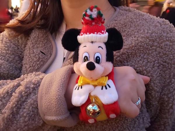 パレードからイルミまで見どころ満載! 東京ディズニーランドのクリスマス